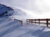 Snow Fence (photo Marc Gallin)